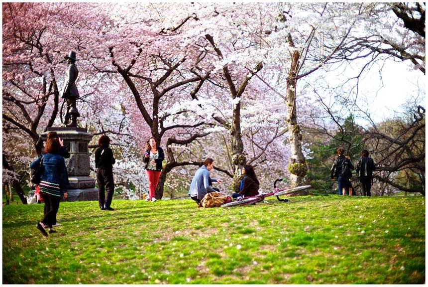 central-park-khong-gian-xanh-khong-lo-giua-thanh-pho-new-york-4