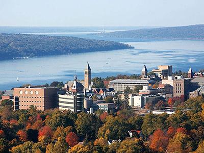 Ivy League – nhóm các trường đại học xuất chúng nhất nước Mỹ (Phần 1)