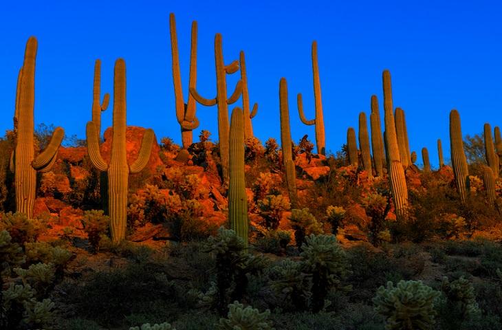 Tốp 7 công viên quyến rũ bậc nhất nước Mỹ